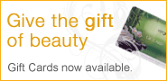 Vergo salon gift cards